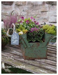 Isas Trädgård: Höstinspiration old toolbox planter