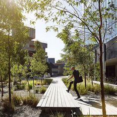 MUMA - Sculpture Forecourt by Kerstin Thompson Architects - Australian Landscape Architecture - VIC, Australia - Image 1