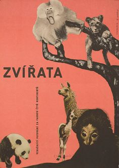 1964 Czech poster for Les animaux (Frédéric Rossif, France, 1964); Designer: Cenek Prazák (1914-1996).