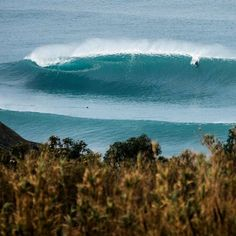 """""""Yesterday was epic for everybody!! Portugal is pumping  Photo @baleixophoto"""" @tocardosoo"""
