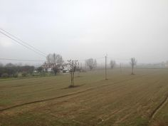 @Prato (IT) is Cloudy! Discover the realtime Weather in Prato and share yours