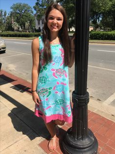 Simply Southern Turtle Dress