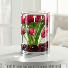 Tulips Submerged in Water PRETTY