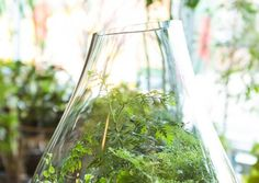 001_012_2013_03_30_refinery29_sprouthome-029-copy