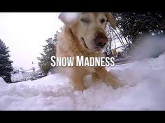 Snow Madness from BtheDoggie - enjoy!
