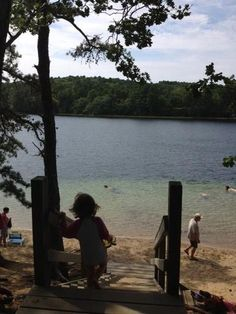 Wellfleet Ponds Are Secret Cape Cod Treasures - Forbes Cape Cod Camping, New England Usa, Cape Cod Bay, Cape Cod Vacation, Cape Cod Beaches, Natural Pond, Ocean Sounds, Truro, All I Ever Wanted