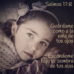 Guardame como a la niña de tus ojos, escóndeme bajo la sombra de tus alas (Salmos 17:8)