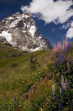Matterhorn - Cervinia, Valle d'Aosta, Italy