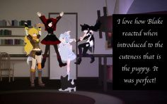 """RWBY Confessions  """"I love how Blake reacted when introduced to the cuteness that is the puppy. It was perfect!"""""""
