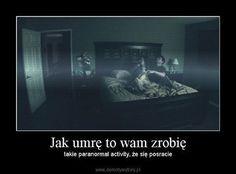 That's True Memes Polish Memes, You Deserve Better, True Memes, Read News, Reading Lists, Haha, Paranormal, Jokes, Historia