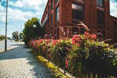 Natura i industrialne otoczenie? Para doskonała! - Inspirowani Naturą Flower Boxes, Flowers, Cities, Sidewalk, Urban, Decor, Stop It, Window Boxes, Decoration