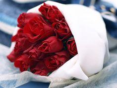 Roses  http://samoegl.blogspot.com/