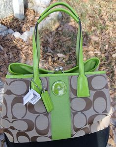 LOVE THIS PURSE...especially the green!!