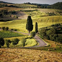 A Tuscany delight   Flickr - Photo Sharing!