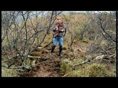 Grizzly Man (Docudrama 2005) - YouTube