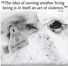 There's no need to exploit and harm someone for your own pleasure or profit. ALL animals -- human AND nonhuman -- have the inherent rights not to be treated as someone's property or used/exploited for someone else's interests. We rob others of those rights and steal what isn't ours. We harm those who mean us no harm. If you wouldn't want to be treated like that, then don't do it to someone else! www.vegankit.com & www.humanemyth.org & www.peacefulprairie.org/humane-myth01.html