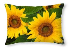 "Sunflower Trio Throw Pillow 20"" x 14"""