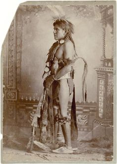 """The tribes name in their own language is Apsáalooke, meaning """"children of the large-beaked bird"""". they had migrated from the eastern woodland areas. the were pushed to the west by the Lakota (Sioux), who were being pushed due to the european/american expansion. the Sioux took over the Crow territory from the black hills of north dakota to the big horn mountains of montana. the crow eventually divided into three groups, The Mountain Crow, The River Crow, and Kicked in the Bellies."""