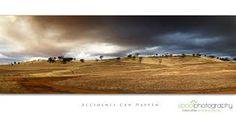 australian farm landscape - Google Search