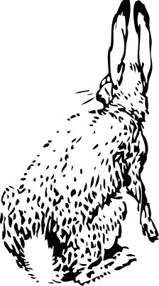 Free Black and White Rabbit Clipart, 1 page of Public Domain Clip Art
