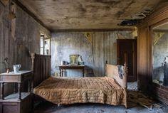 La Naturaleza ocupa lugares abandonados. 21 fotos.