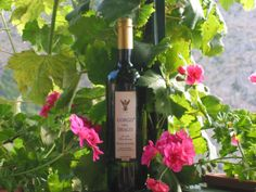 Agriturismo Tarantola, Sicily. Three kinds of wine are currently bottled - the white Inzolia Chardonnay named Gorgo del Drago - the red Cabernet Syrah - and Conti Testa Nero D' Avola. Wine tasting and guided tours of the farm are possible http://www.gorgodeldrago.it/product.htm