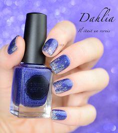 Dahlia - Il était un vernis
