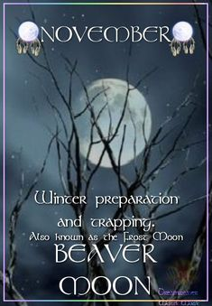 BEAVER MOON Time for winter preparation and trapping. Also known as the Frost Moon Frost Moon, Moon Time, Meditation, Moon Magic, Sabbats, Beautiful Moon, Moon Signs, Moon Phases, Book Of Shadows