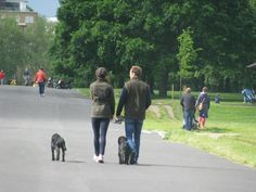 Kate was spotted walking Lupo inKensington Gardensaccompanied by her brother James and the Middletons' dog Ella.