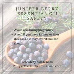 Juniper Berry (Juniperus communis) - Read the complete essential oil profie Essential Oil Safety, Are Essential Oils Safe, Juniper Berry Essential Oil, Diluting Essential Oils, Juniperus Communis, Liver Disease, Doterra, Aromatherapy, Berries