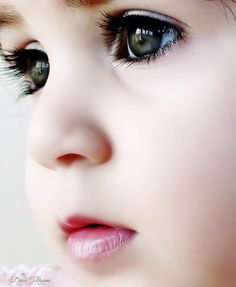 Those eyes, those lashes, that little nose!