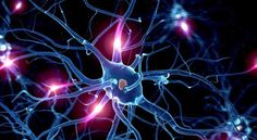 Rethinking serotonin could lead to shift in psychiatric care