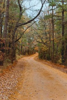 East Texas Red Dirt Road-I, via Flickr.                                                               This may be in Texas, but you can find many of these in the Adirondacks