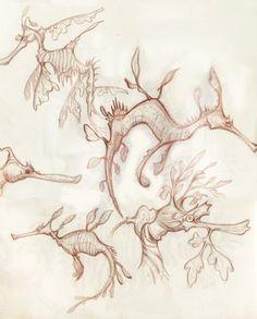 Weedy and Leafy Sea dragons Sea Creatures Drawing, Ocean Creatures, Weedy Sea Dragon, Tattoo Coloring Book, Dragon Illustration, Aboriginal Artwork, Desenho Tattoo, Smart Art, Ocean Art