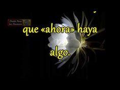 Mensajes,  Poemas,videos: PROMESAS DE DIOS PARA HOY,14 Enero-(Solo Español)