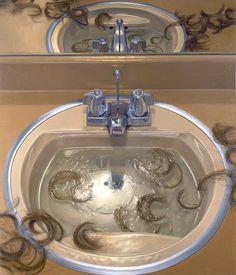 "Catherine Murphy, ""Bathroom Sink"" oil on canvas, 51 ½ x 44 inches (courtesy of Peter Freeman, Inc., New York) It's disturbing. But amazing detail. Painting Inspiration, Art Inspo, Gcse Art Sketchbook, A Level Art, Collaborative Art, Ap Art, Pretty Art, Aesthetic Art, Art Boards"