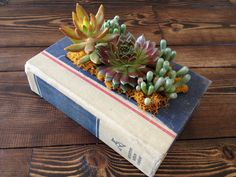 Large Upcycled Vintage Book Planter for Succulents or Flowers