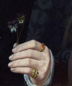 Jan van Scorel - A Man with a Pansy and a Skull, 1535 Renaissance Paintings, Renaissance Art, Italian Renaissance, Old Paintings, Classical Art, Detail Art, Aesthetic Art, Pansies, Art And Architecture