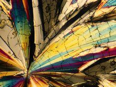 sugar-crystals-boswell_60457_600x450.jpg (600×450)