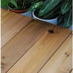 Western Red Cedar Timber Deck, Western Red Cedar, Bamboo Cutting Board, Hardwood, Home, Natural Wood, Ad Home, Homes