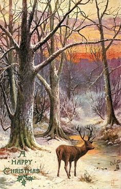 deer looking to right in forest with wishes for a Happy Christmas/Vintage Christmas Post Card