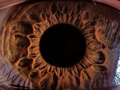 a picture of a 16-year old boy's eye