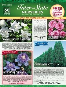 Your Cart Contents, Direct Gardening - Trees, Flowers, Seeds, Bulbs, Daylilies, Perennials