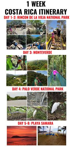 Coming to Costa Rica for 1 week? Check out this itinerary to help you plan your trip http://mytanfeet.com/activities/essential-costa-rica-monkey-tours/ via @mytanfeet