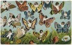 https://flic.kr/p/brHzBV | Butterfly babies | Postcard from ca. 1910s. Found in Sydney.