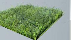 Grass - 3D Warehouse