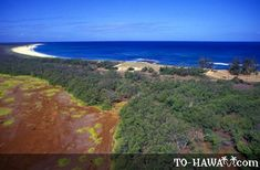 Niihau is also knows as The Forbidden Island is one of the Hawaiian islands located northwest of Kauai. Hawaii Tourism, Aloha Hawaii, Island Beach, Hawaiian Islands, Kauai, Beautiful World, Ocean, Explore, Adventure