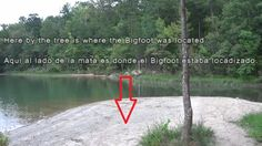 Research mystery of Bigfoot and a Ghost in Latta Plantation, North Carolina