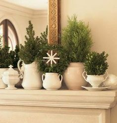 Pretty Display.Love The Different Greenery Used......