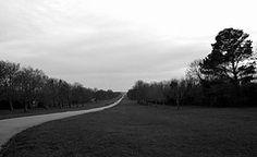 Long Walk to Windsor Castle 123 Photo, Windsor Castle, Country Roads, Explore, Photography, Photograph, Fotografie, Photoshoot, Fotografia